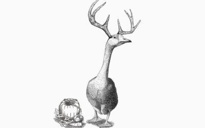 Oh Deer! Solum